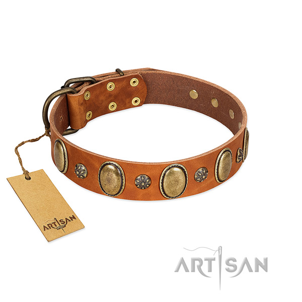 Everyday walking flexible genuine leather dog collar with studs