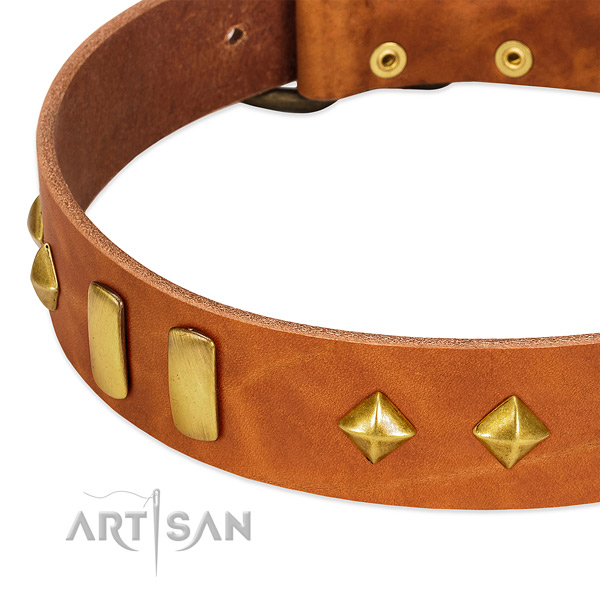 Fancy walking genuine leather dog collar with exquisite adornments