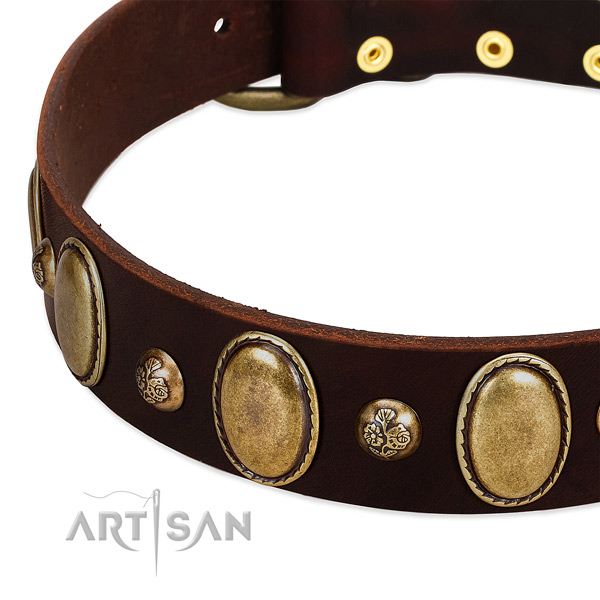 Natural leather dog collar with exceptional adornments