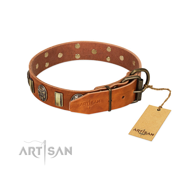 Durable traditional buckle on genuine leather collar for daily walking your canine