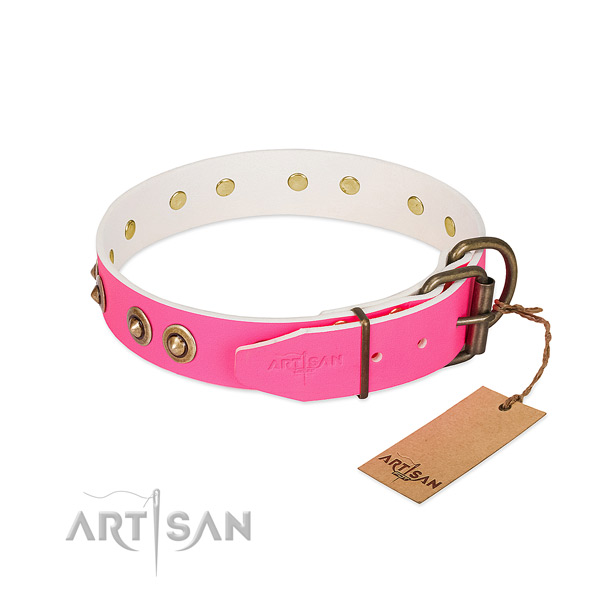 Full grain leather dog collar with reliable fittings and adornments