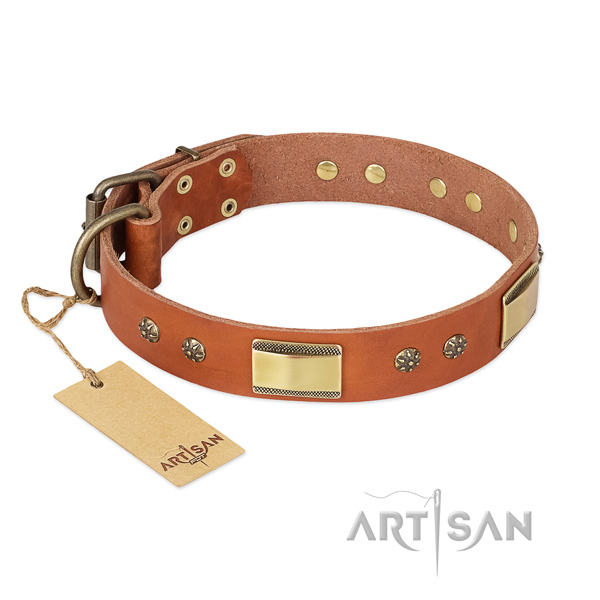 Stunning full grain natural leather collar for your pet