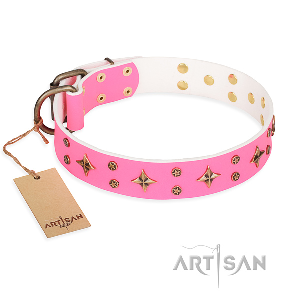 Daily use dog collar of quality full grain natural leather with adornments