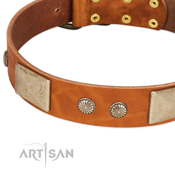 Rust resistant D-ring on genuine leather dog collar for your pet