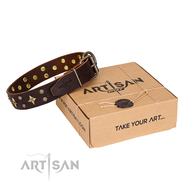 Basic training dog collar of quality genuine leather with decorations