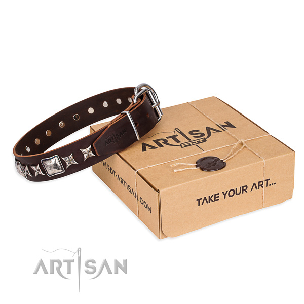 Everyday use dog collar of top quality genuine leather with studs