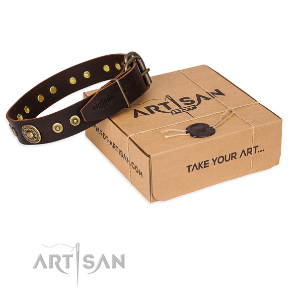 Leather dog collar made of soft to touch material with strong fittings