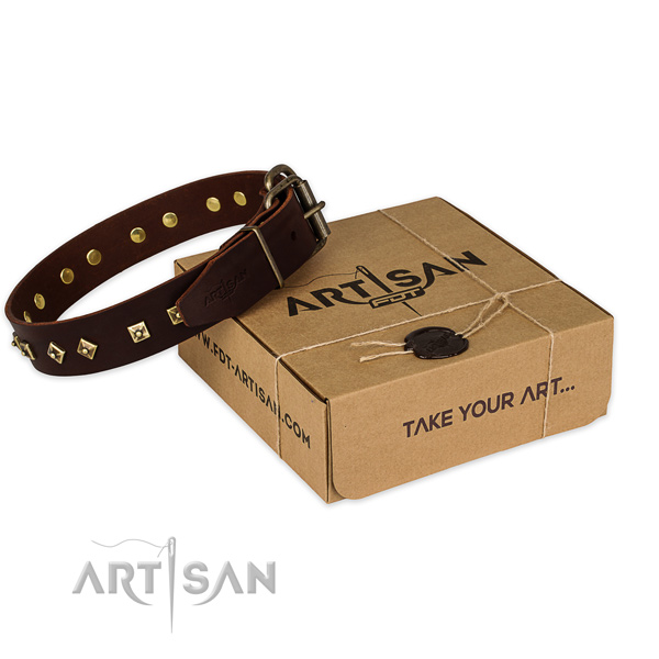 Durable traditional buckle on full grain natural leather dog collar for basic training