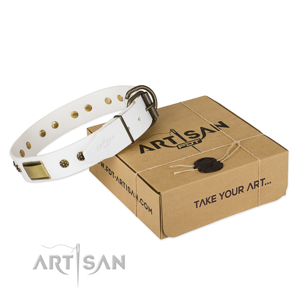 Awesome full grain genuine leather collar for your stylish dog