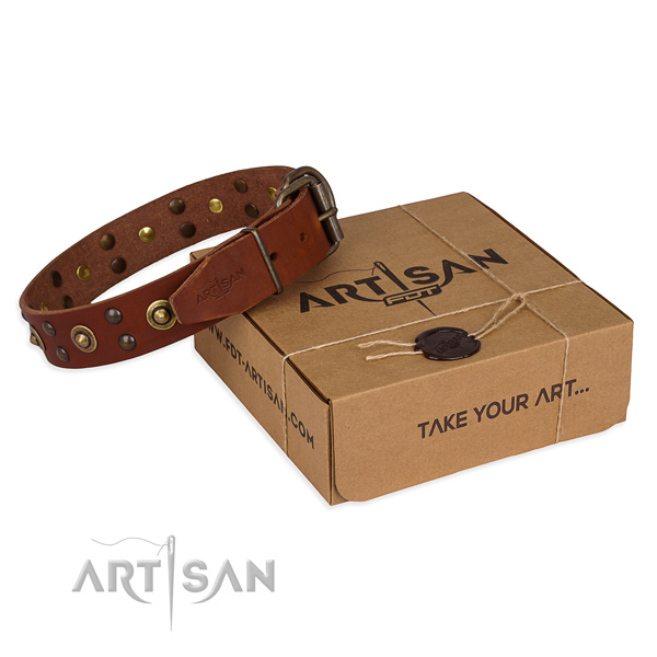 Strong traditional buckle on full grain genuine leather collar for your lovely doggie