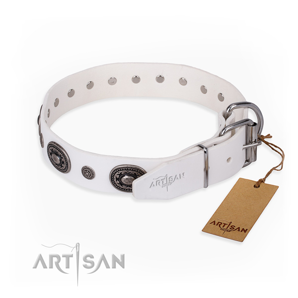 Durable leather dog collar handcrafted for walking