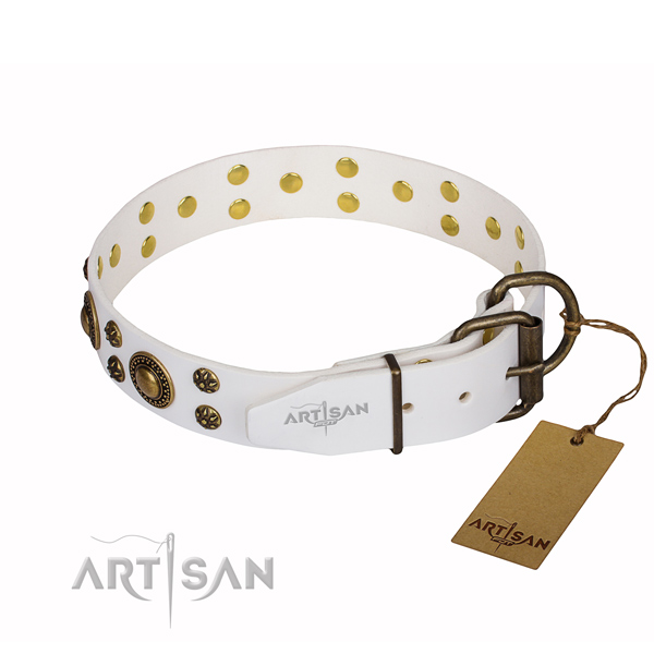 Everyday use decorated dog collar of durable leather