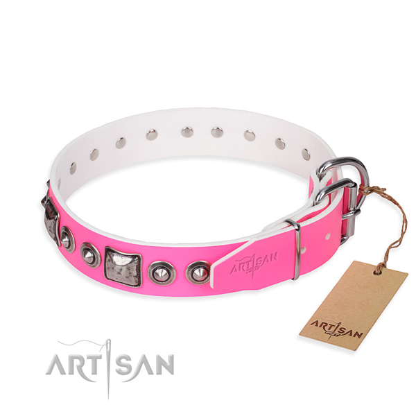 Strong leather dog collar created for stylish walking