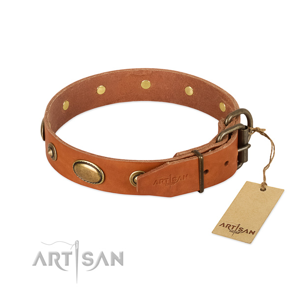 Strong traditional buckle on full grain leather dog collar for your canine