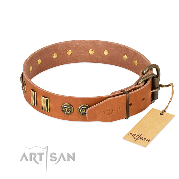 Rust-proof decorations on natural leather dog collar for your pet