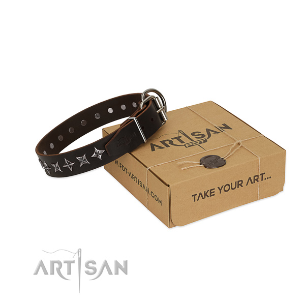 Daily use dog collar of quality full grain leather with decorations