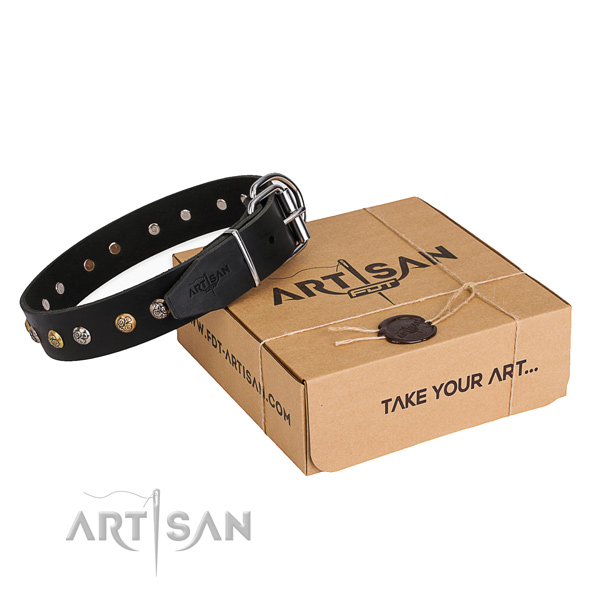 Quality full grain natural leather dog collar crafted for daily walking