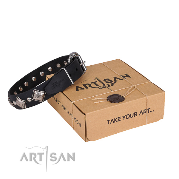 Stylish walking dog collar of fine quality natural leather with embellishments