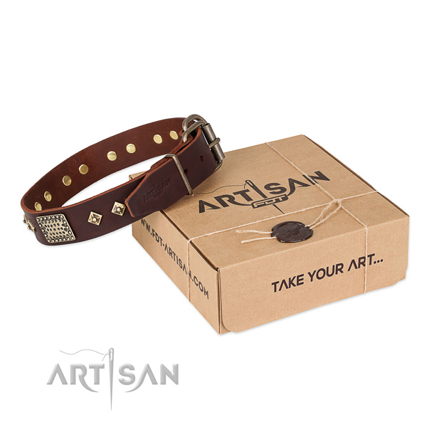 Decorated genuine leather collar for your stylish doggie
