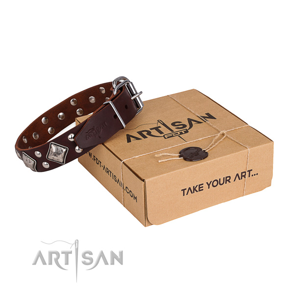 Comfortable wearing dog collar with Top notch rust resistant studs