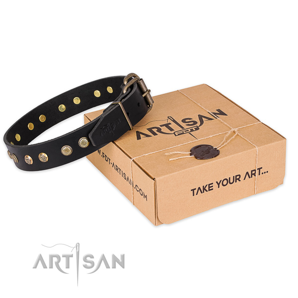 Rust-proof buckle on full grain genuine leather collar for your lovely canine