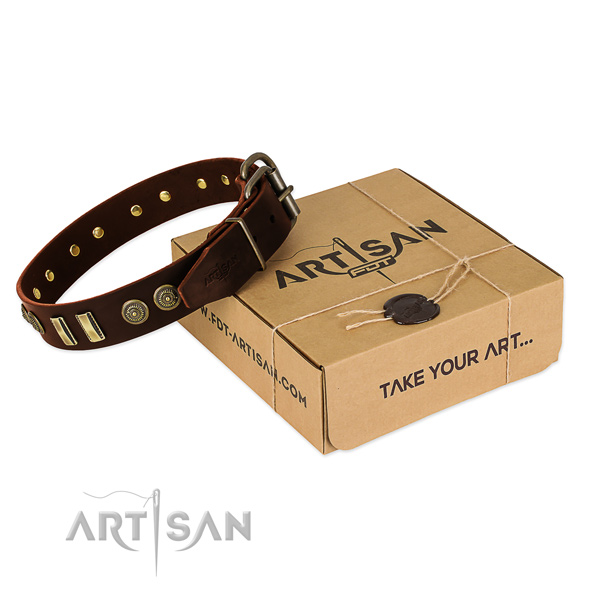 Rust-proof fittings on leather dog collar for your pet
