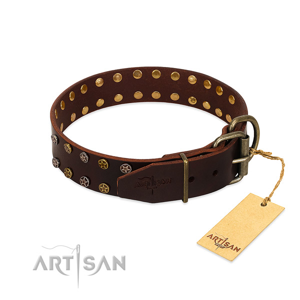 Fancy walking full grain genuine leather dog collar with exceptional embellishments