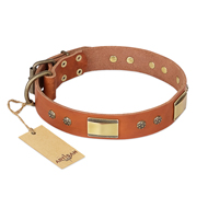 """Enchanting Spectacle"" FDT Artisan Tan Leather Collie Collar with Old Bronze Look Plates and Round Studs"