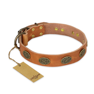 """Magic Amulet"" FDT Artisan Tan Leather Collie Collar with Oval Studs"
