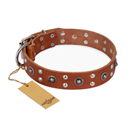 """Silver Elegance"" FDT Artisan Decorated Leather Collie Collar with Old Silver-Like Plated Studs and Cones"