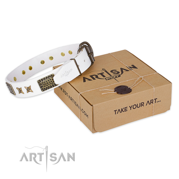 Reliable buckle on natural genuine leather collar for your stylish four-legged friend