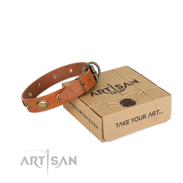 Fashionable full grain leather collar for your handsome dog