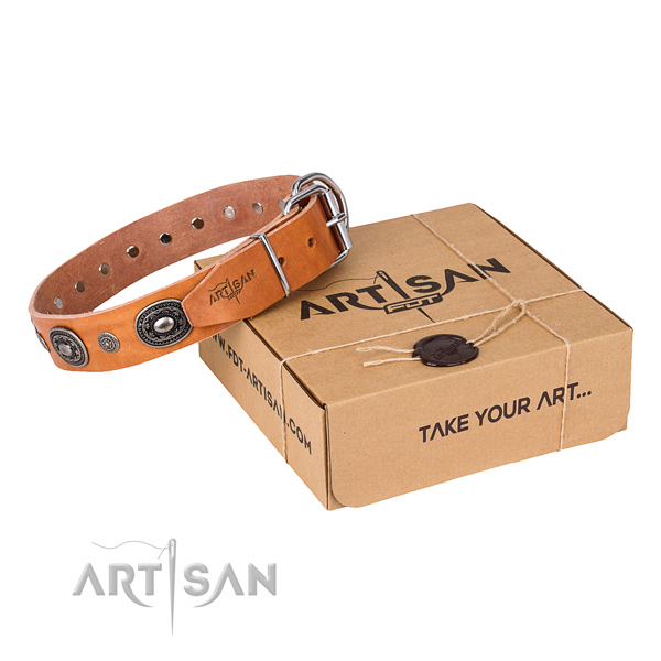 Top rate full grain leather dog collar handmade for daily walking