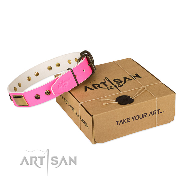 Stylish design full grain natural leather collar for your attractive four-legged friend