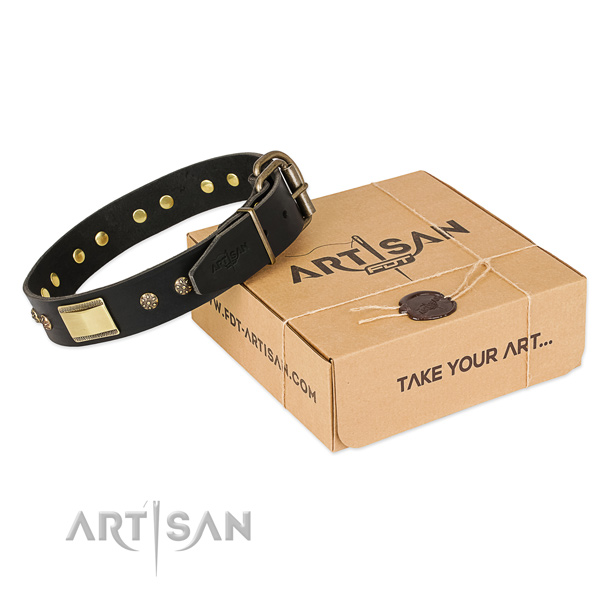 Extraordinary genuine leather collar for your handsome four-legged friend