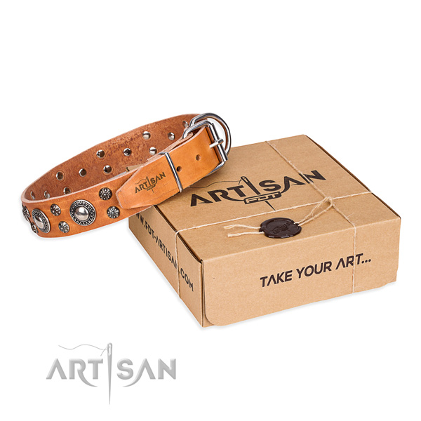 Comfortable wearing dog collar of quality full grain leather with embellishments