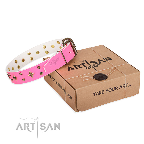 Walking dog collar of durable genuine leather with adornments