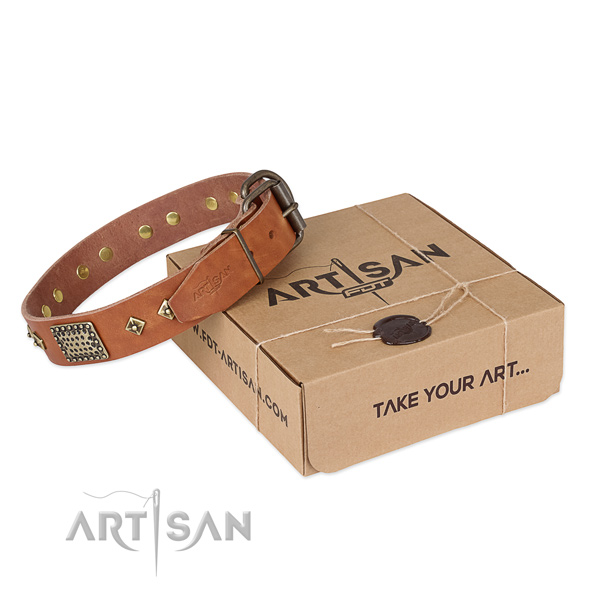 Easy wearing full grain natural leather collar for your stylish four-legged friend