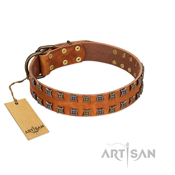 Durable full grain leather dog collar with decorations for your dog