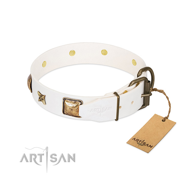 Full grain natural leather dog collar with corrosion proof hardware and decorations