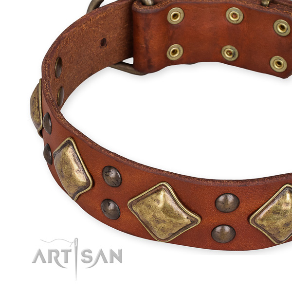 Full grain natural leather collar with durable hardware for your stylish dog
