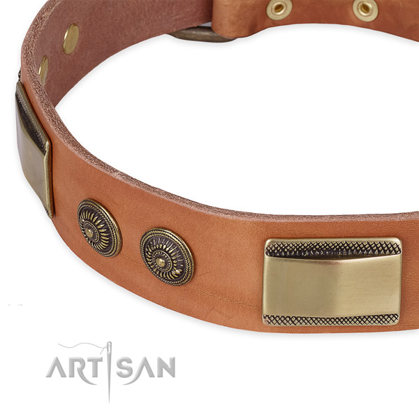 Convenient leather collar for your lovely four-legged friend
