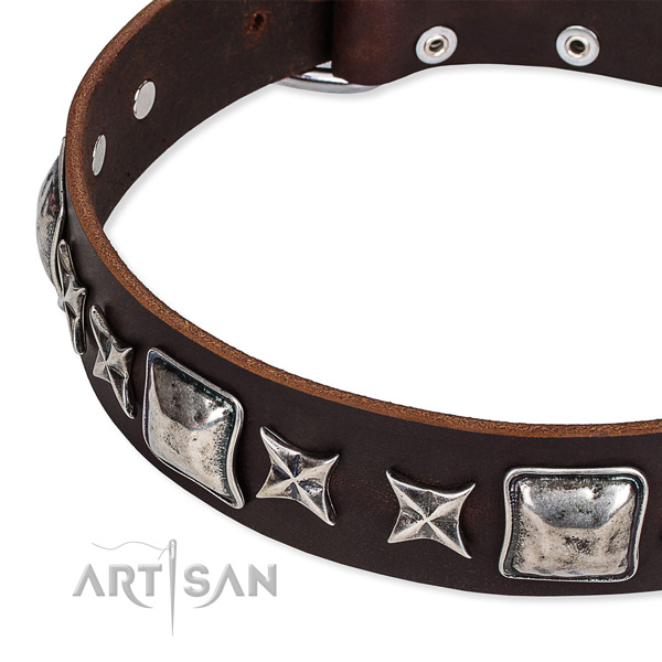 Walking decorated dog collar of fine quality full grain leather
