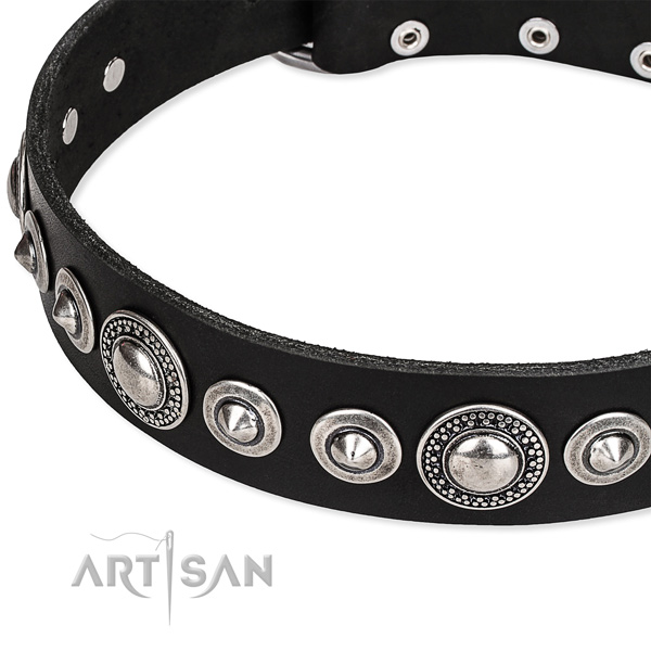 Daily walking embellished dog collar of high quality full grain leather