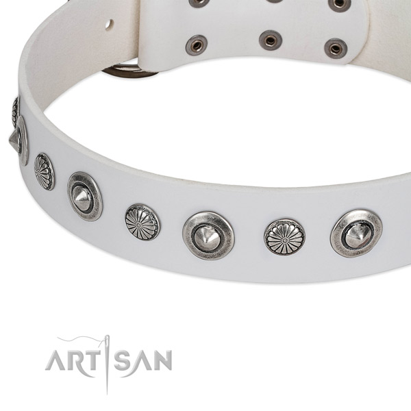 Full grain natural leather collar with corrosion proof buckle for your impressive dog