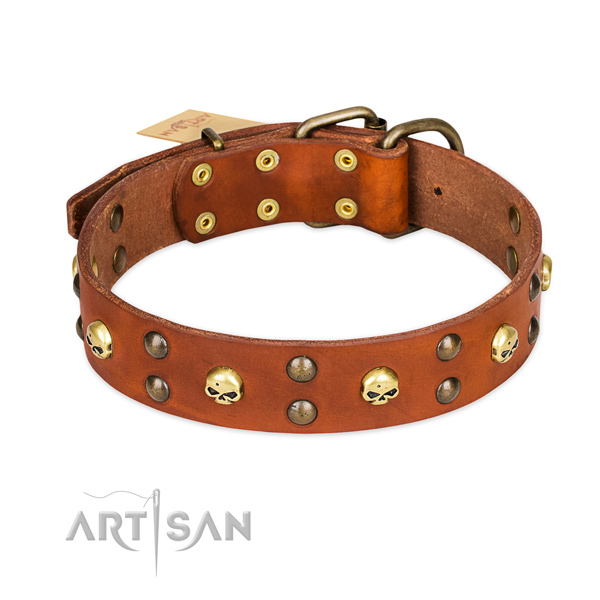 Comfortable wearing dog collar of reliable genuine leather with decorations