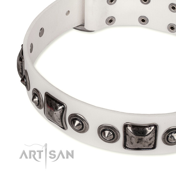 Soft to touch leather dog collar created for your lovely pet