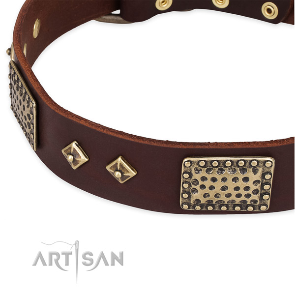 Corrosion proof hardware on full grain genuine leather dog collar for your pet