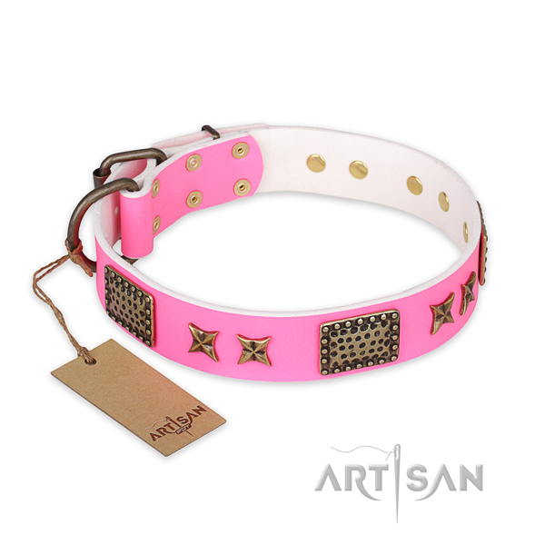 Incredible full grain natural leather dog collar with reliable hardware
