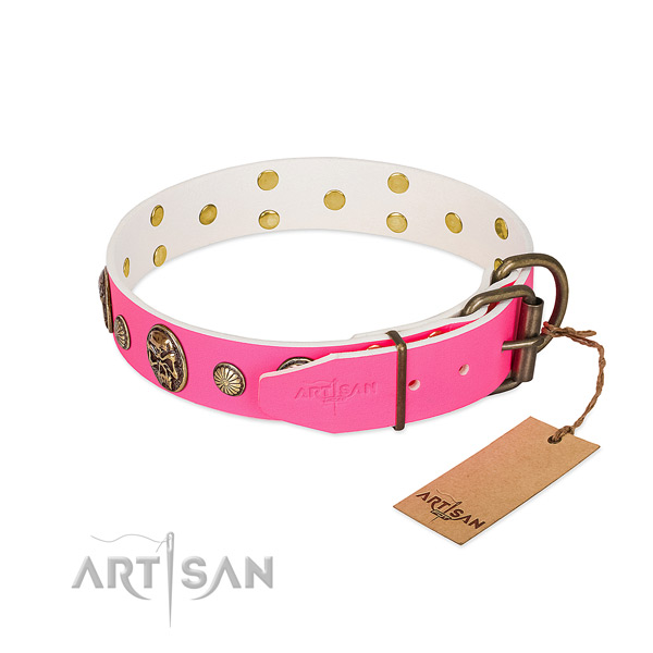 Rust resistant studs on full grain leather dog collar for your canine